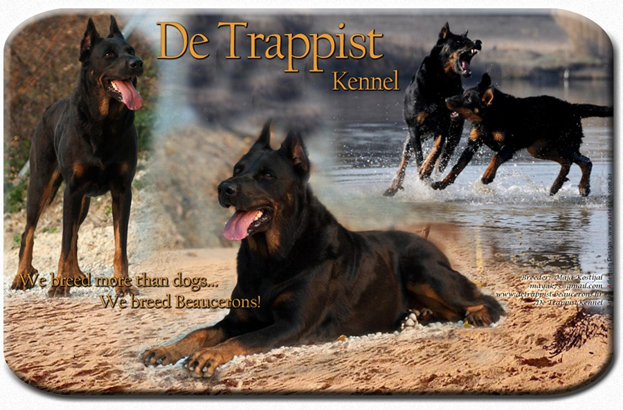 www.detrappist-beaucerons.hr